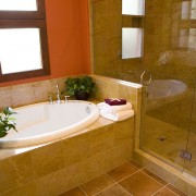 Shower Doors Phoenix